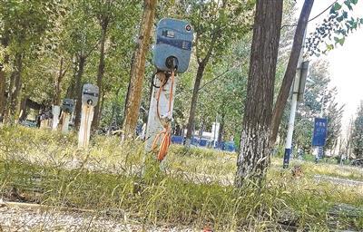 """北京蟹岛附近现充电桩""""坟场"""" 拆除重置陷入困局"""