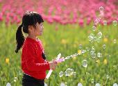 #(社会)(4)乐享春光
