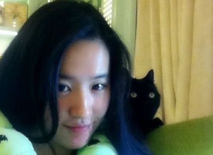 刘亦菲熬夜看剧本爱猫相伴