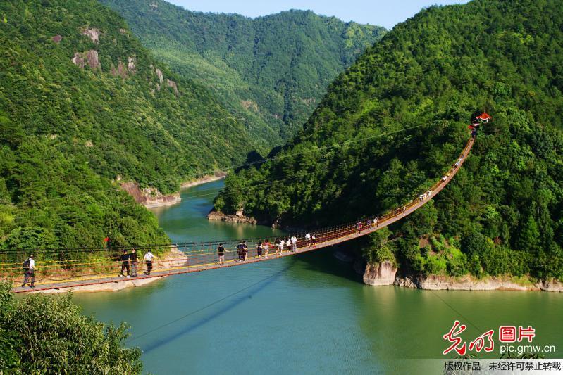 浙江泰顺峡谷之间架起悬索桥 游客心惊体验高空观景