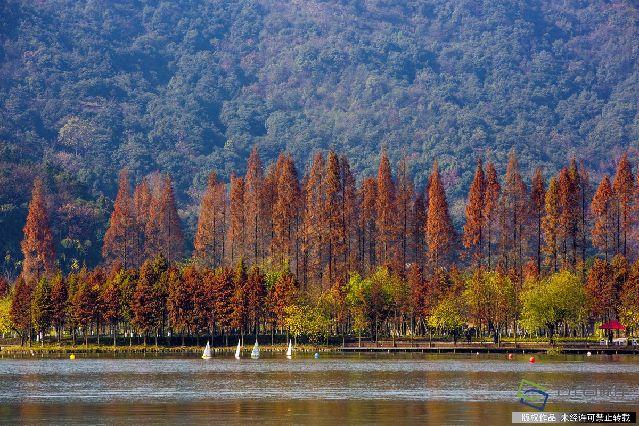 2016年12月17日,浙江省杭州市,湘湖以风景秀丽而被誉为西湖的_姐妹湖_。