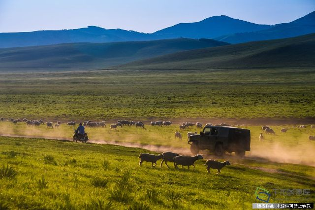 2017年7月17日,内蒙古大草原,夏季风光美如画。
