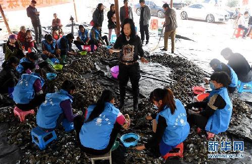 """热门图片    广西北海市享有""""珠城""""美誉,源于其盛产有""""中国海水珍珠的"""
