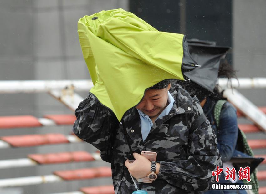 """台风""""狮子山""""袭东北 吉林秋雨如注"""