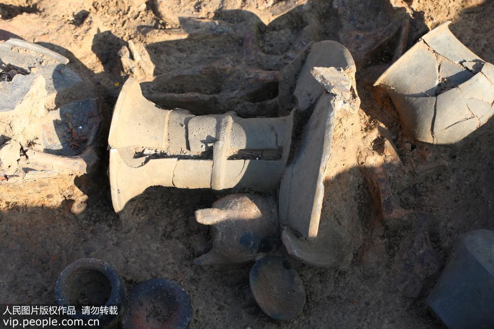 江苏泗洪发现5000年前新石器时代遗址