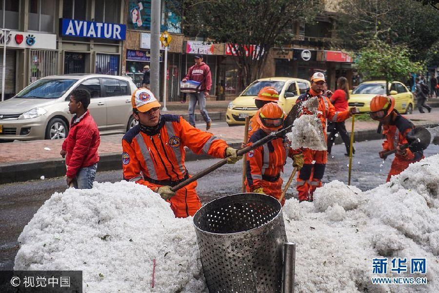 """哥伦比亚首都遭遇罕见大冰雹 汪星人躺""""雪堆""""玩嗨了"""