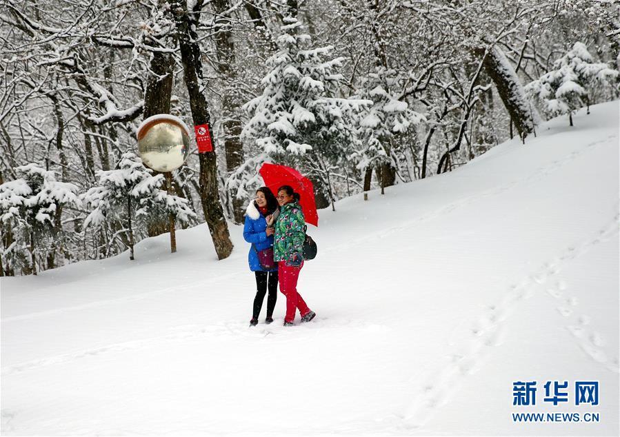 #(环境)(1)多地迎来降雪