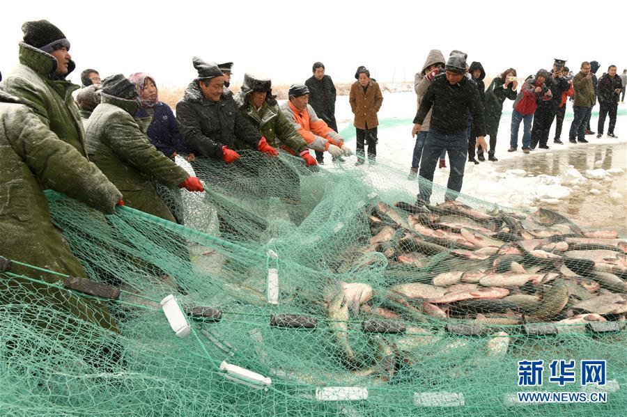 #(社会)(1)人欢鱼跃冬捕忙
