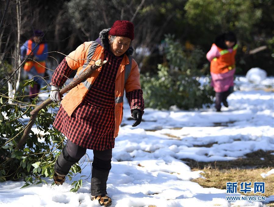 (社会)(2)严寒中的护绿人