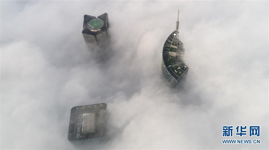 (环境)(1)雾中合肥
