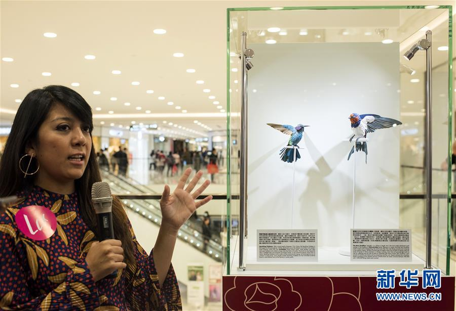 """(文化)(1)""""鸟语花香:纸雕艺术展""""将在香港举行"""
