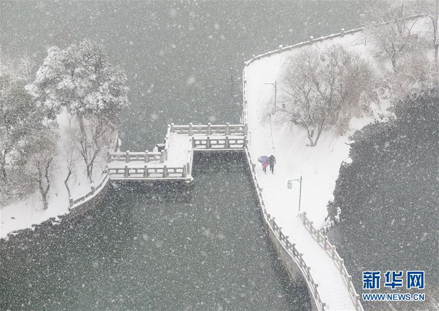 #(环境)(2)雪中行