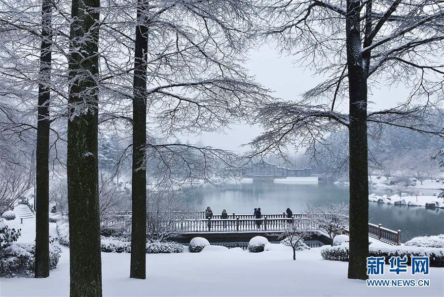 #(环境)(4)雪中行