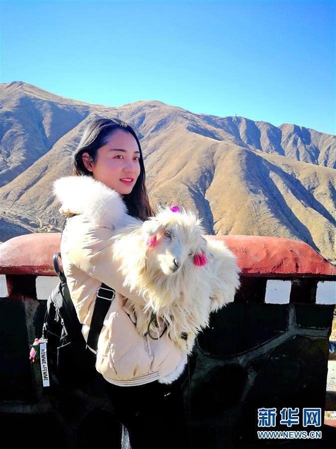 (图文互动)(3)次卓玛和她的小羊