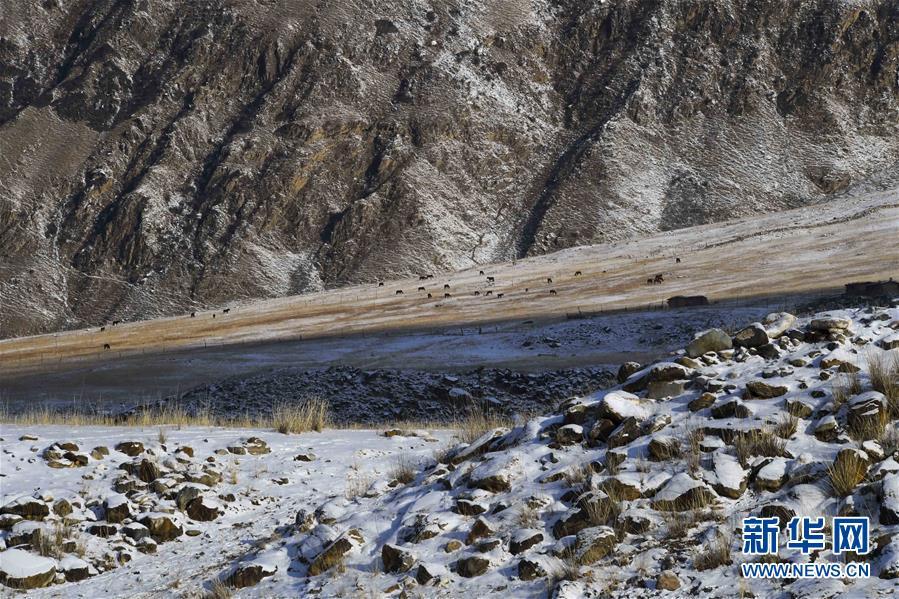 (图片故事)(1)走进天山深处的冬季牧场