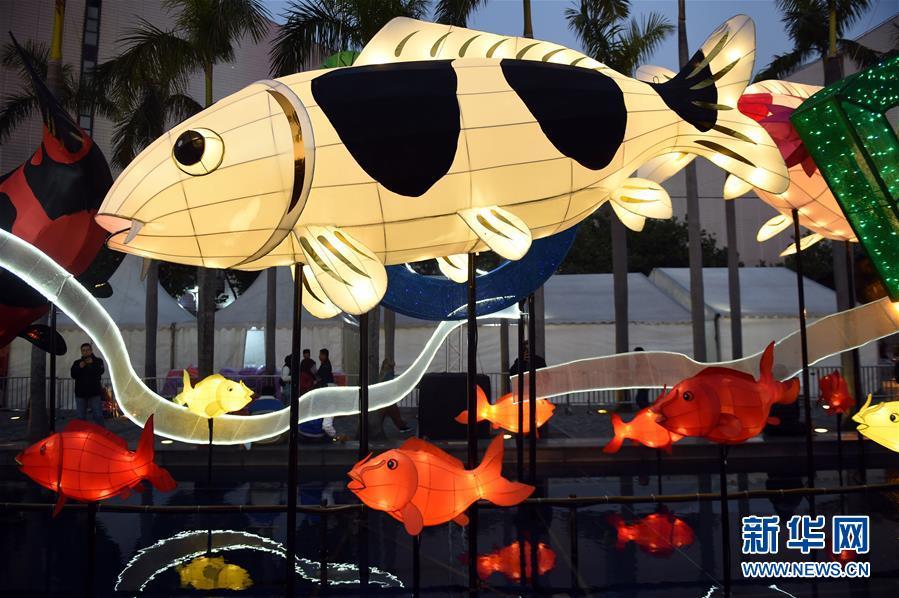 (文化)(5)香港举行春节彩灯展