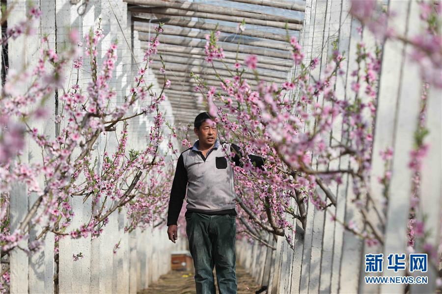 #(经济)(3)春回大地生产忙
