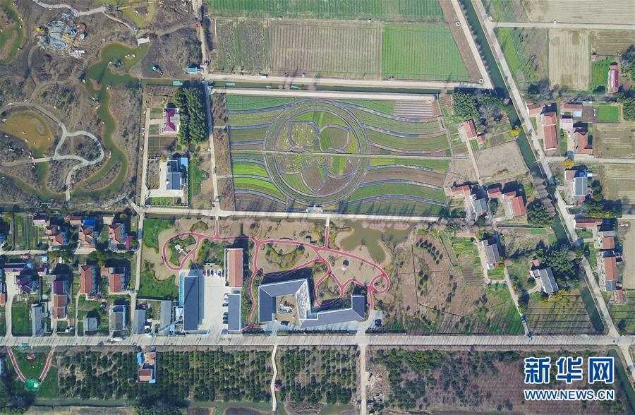 (环境)(1)上海:生物技术助力农村污水处理
