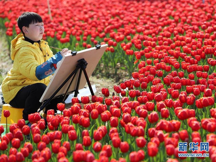 #(社会)(5)乐享春光
