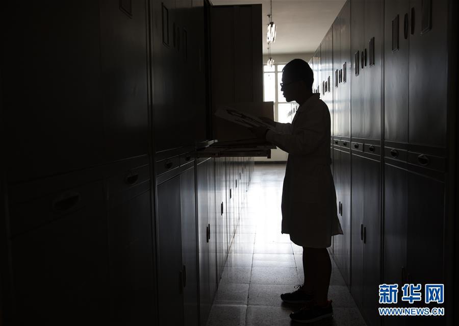 中国数字植物标本馆标本数量已超600万