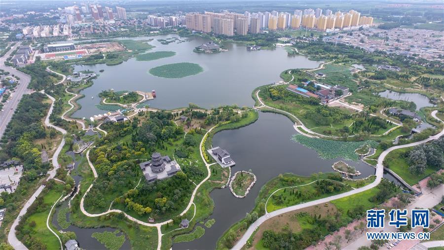 """(环境)(1)废弃污水坑塘变身""""城市绿肺"""""""