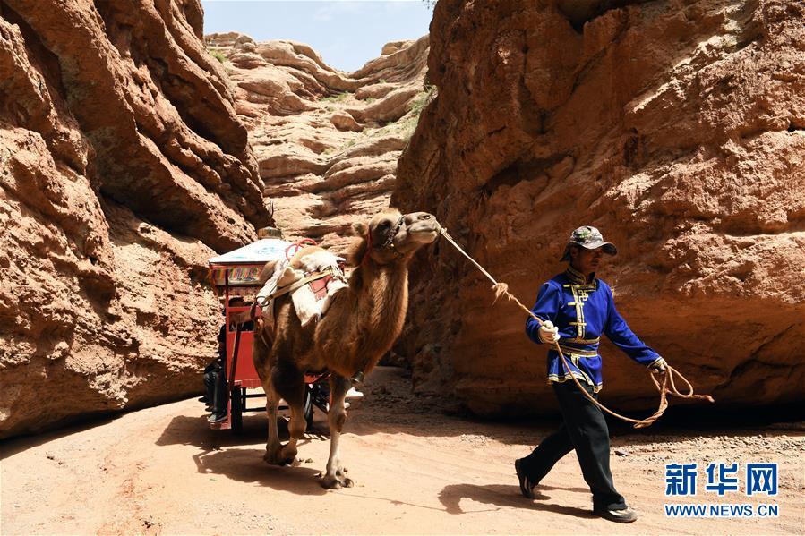 """(经济)(3)甘肃:乡村旅游让农民享受""""绿色收益"""""""