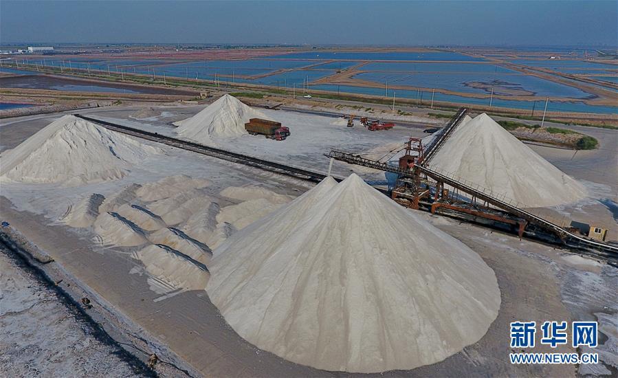 (经济)(2)收获海盐