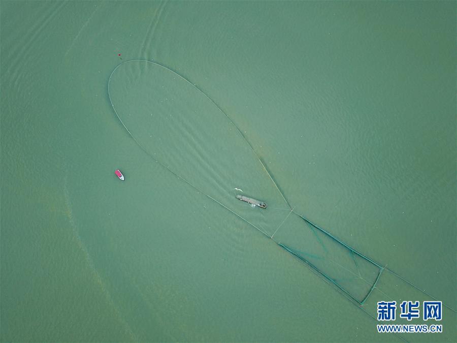 (经济)(3)湖州太湖渔民迎丰收