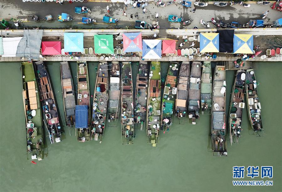 (经济)(6)湖州太湖渔民迎丰收