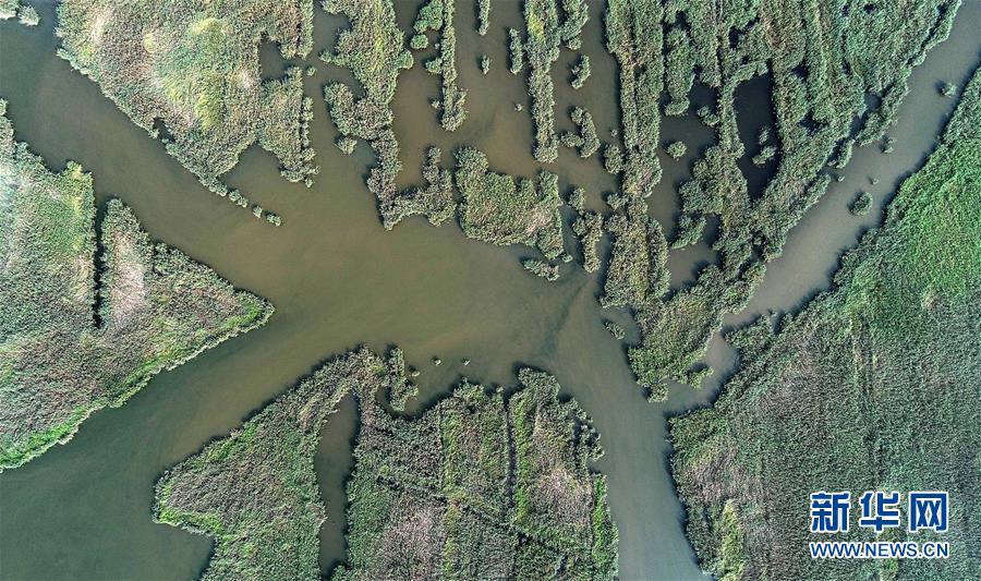 (环境)(2)天津划定生态保护红线