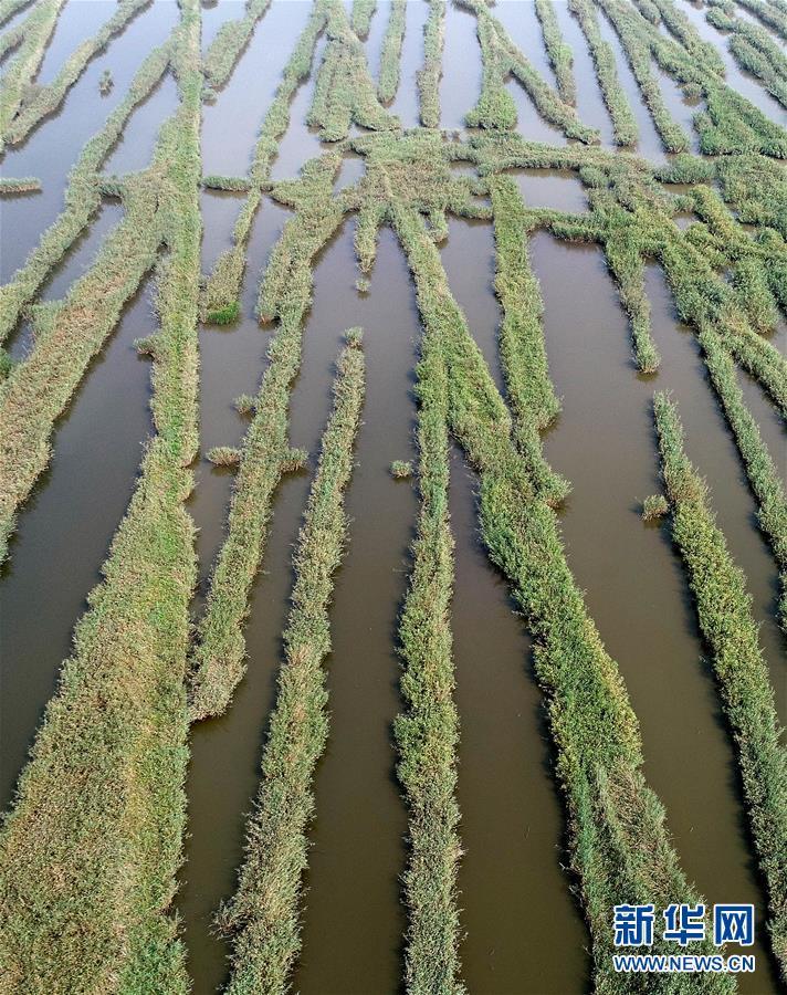 (环境)(3)天津划定生态保护红线
