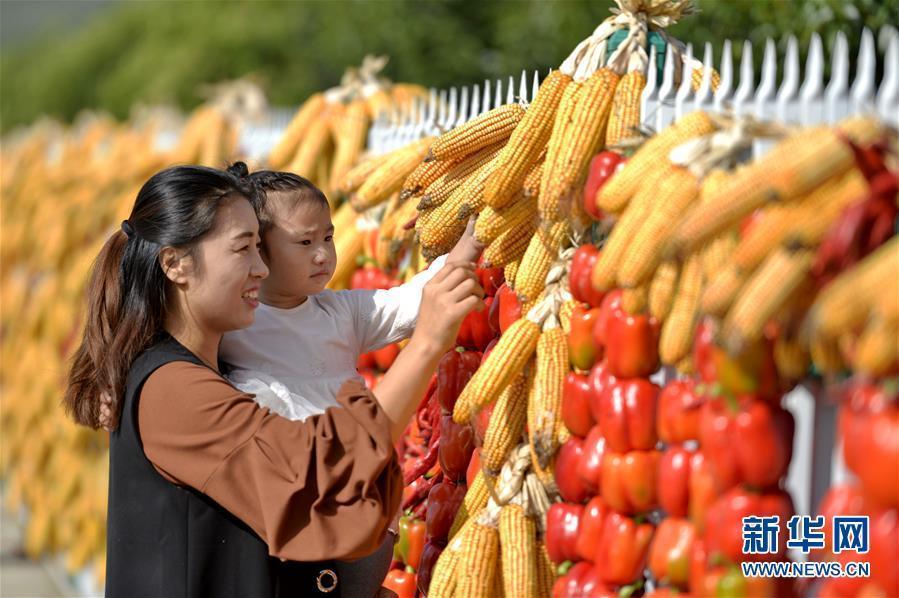 """(社会)(1)河北省首届""""中国农民丰收节""""主会场庆祝活动在沙河举行"""