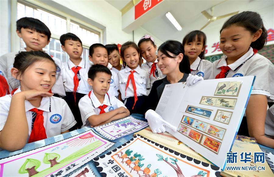 (社会)(1)邮政知识进校园