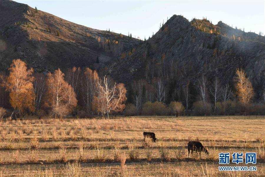 (社会)(4)新疆首个世界地质公园开园