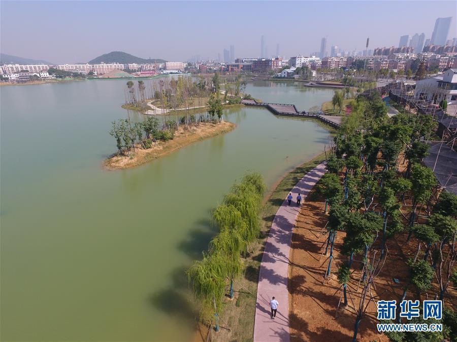 (环境)(2)整治水环境 长沙后湖换新颜