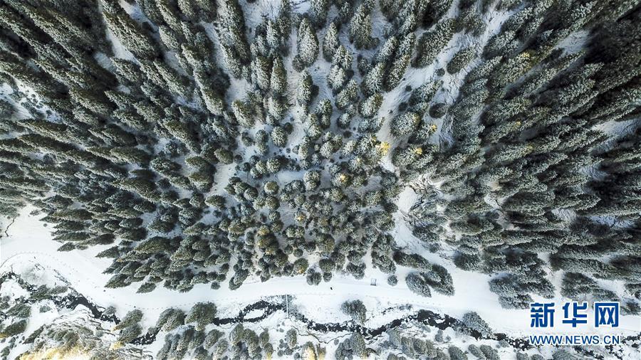 (秋季美丽生态)(1)乌鲁木齐南山雪景美