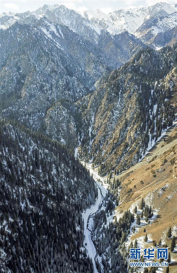 (秋季美丽生态)(7)乌鲁木齐南山雪景美