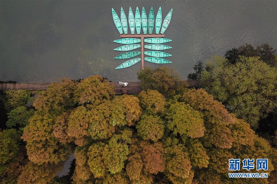 (美丽中国)(1)西湖冬韵