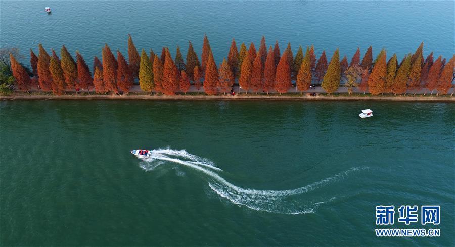 (美丽中国)(3)层林染翠湖