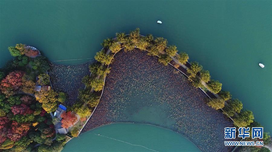 (美丽中国)(2)层林染翠湖