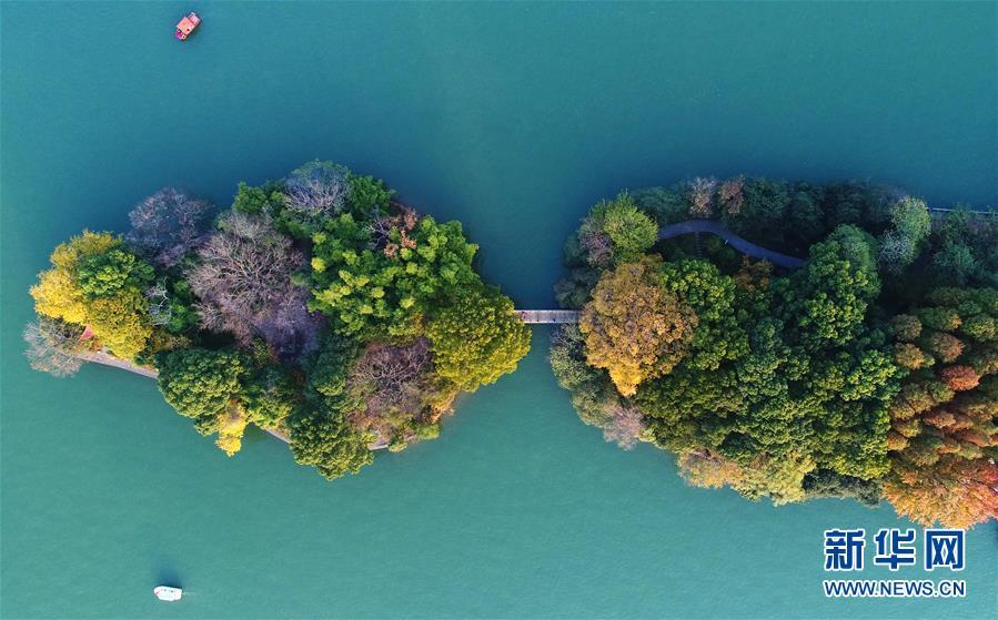 (美丽中国)(4)层林染翠湖