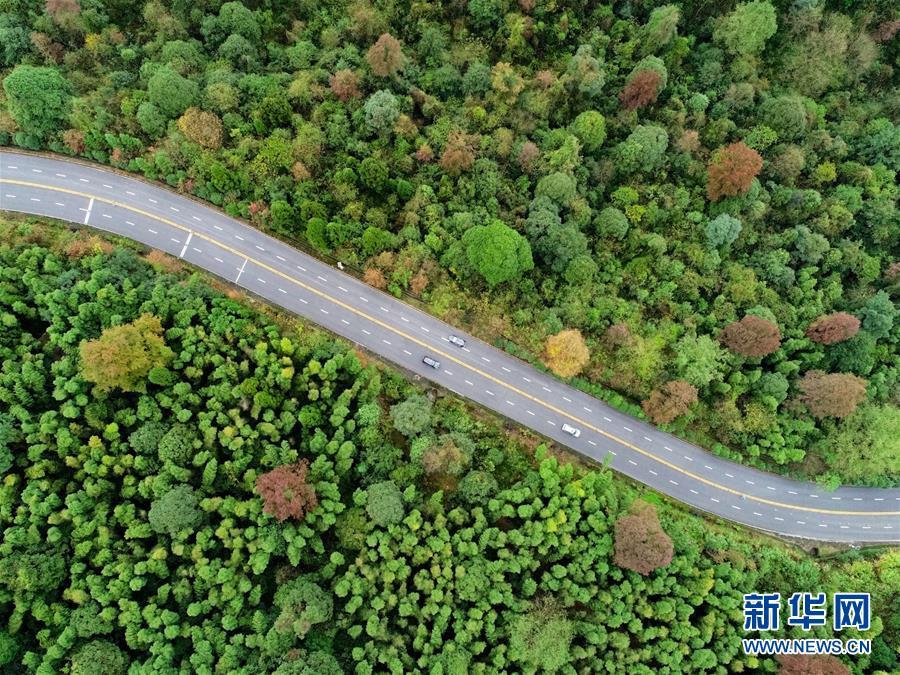 (新华全媒头条)(1)向着新的峰巅登攀——从井冈山精神看中国改革开放40年