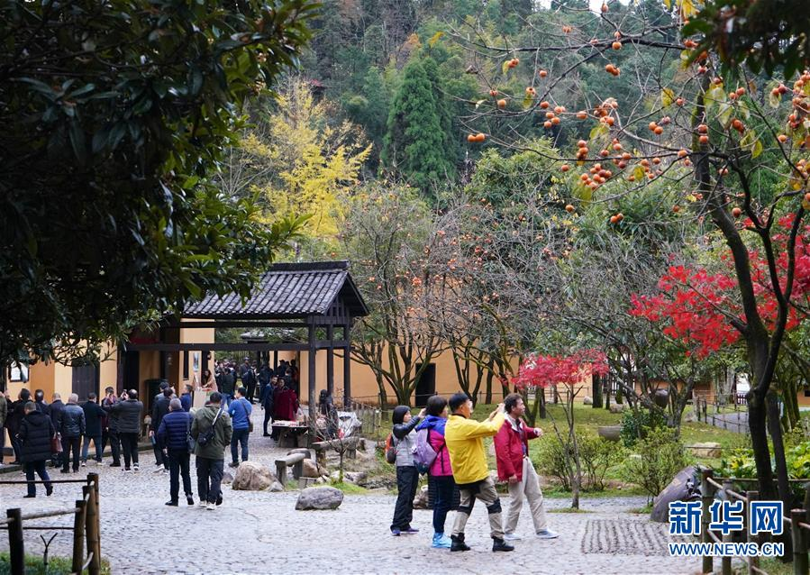 (新华全媒头条)(2)向着新的峰巅登攀——从井冈山精神看中国改革开放40年