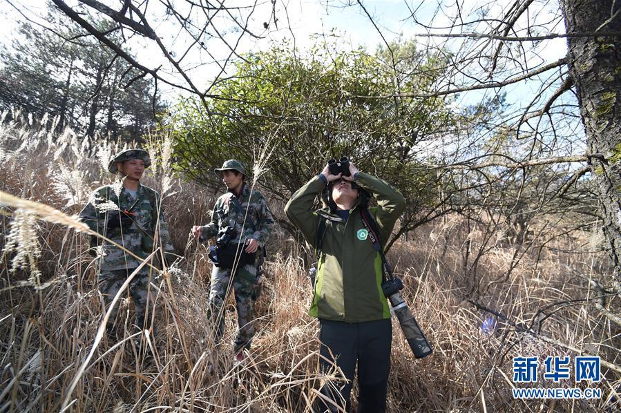 (社會)(1)武夷山國家公園開展生態科考活動