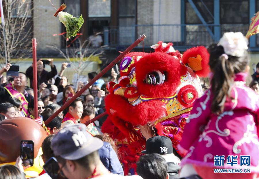 (国际)(6)共庆中国年
