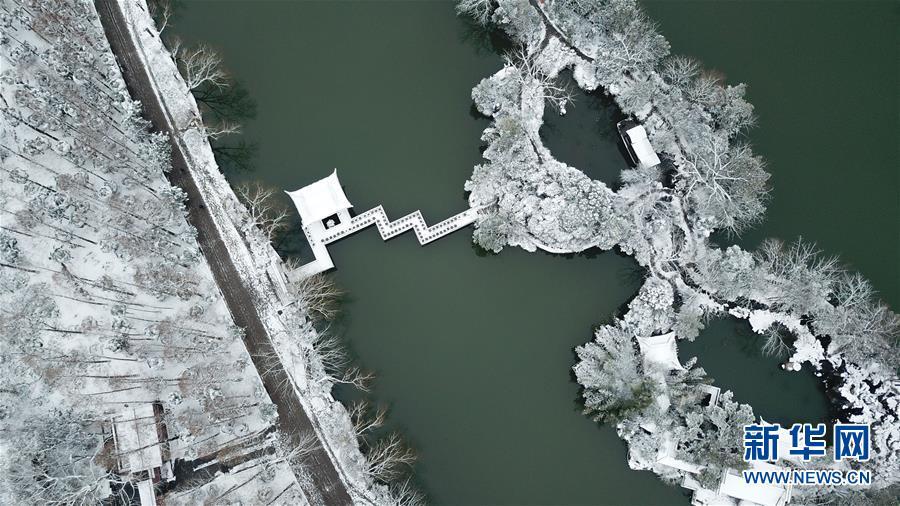 (社会)(2)雪落合肥景色美
