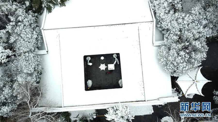 (社会)(9)雪落合肥景色美