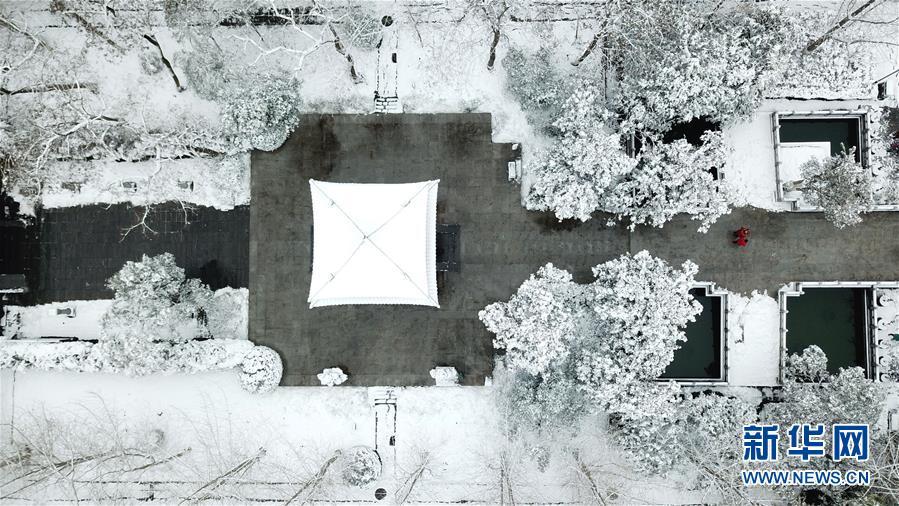 (社会)(8)雪落合肥景色美