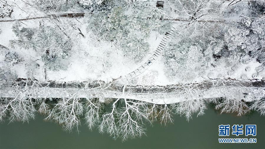 (社会)(3)雪落合肥景色美