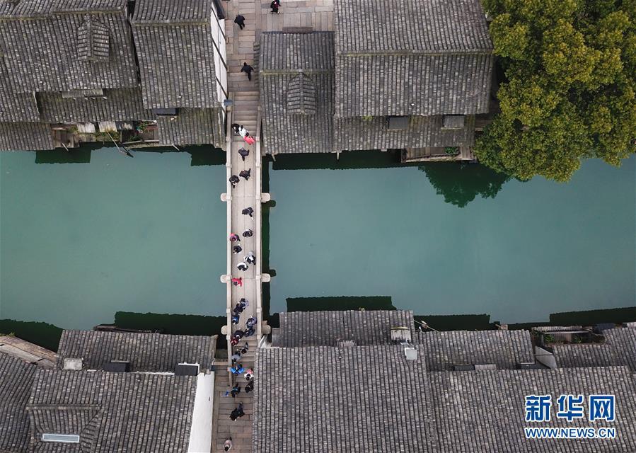 (环境)(1)乌镇春晓